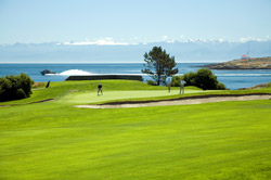 Oak Bay Marina golf course